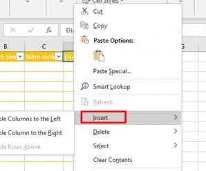Cách thêm cột và xóa cột trong Excel